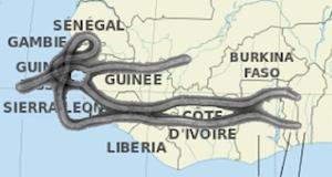Virus Ebola Afrique
